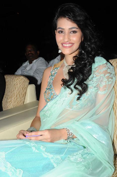 panjaa audio release .. actress pics