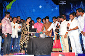 Sahasam Cheyyara Dimbaka audio launch photos-thumbnail-7