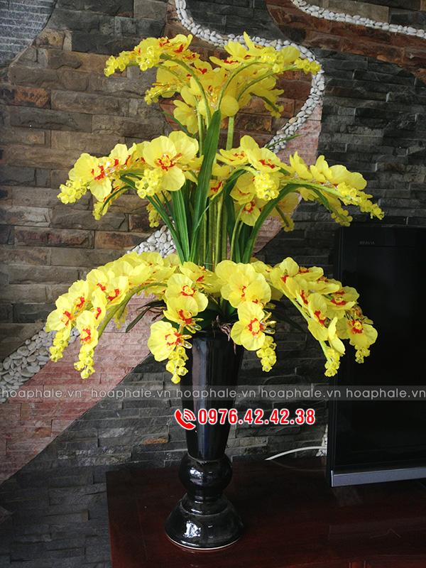 Lan hồ điệp màu vàng, hoa pha lê lan hồ điệp