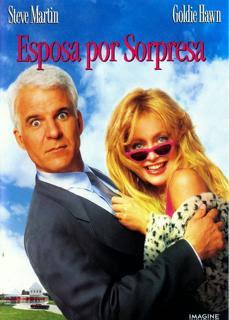 Esposa por Sorpresa 1992 | DVDRip Latino HD Mega