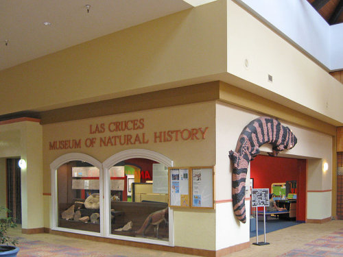las cruces museum of natural history, las cruces nm