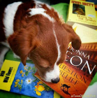 Petal 'nose' how to sniff out a good book