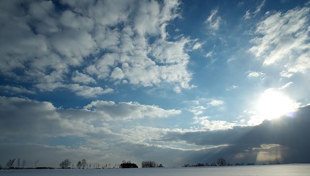 Koniec zimy już tuż tuż a robi nam takie niespodzianki (piękne)
