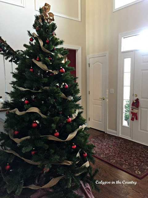 Christmas Tree by Front Door