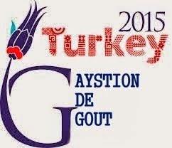 Turkey Gaystion Of Test
