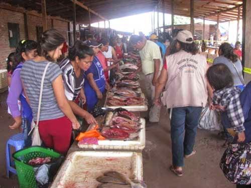 En Villa Montes reclaman por el elevado precio y tamaño del pescado