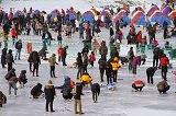เทศกาลตกปลาน้ำแข็งที่เมืองพยองชาง