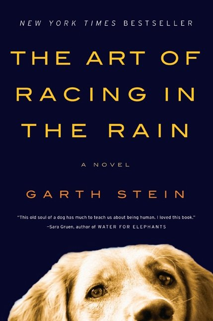 Peacy Keen Blog Book Review: The Art of Racing in the Rain by Garth Stein