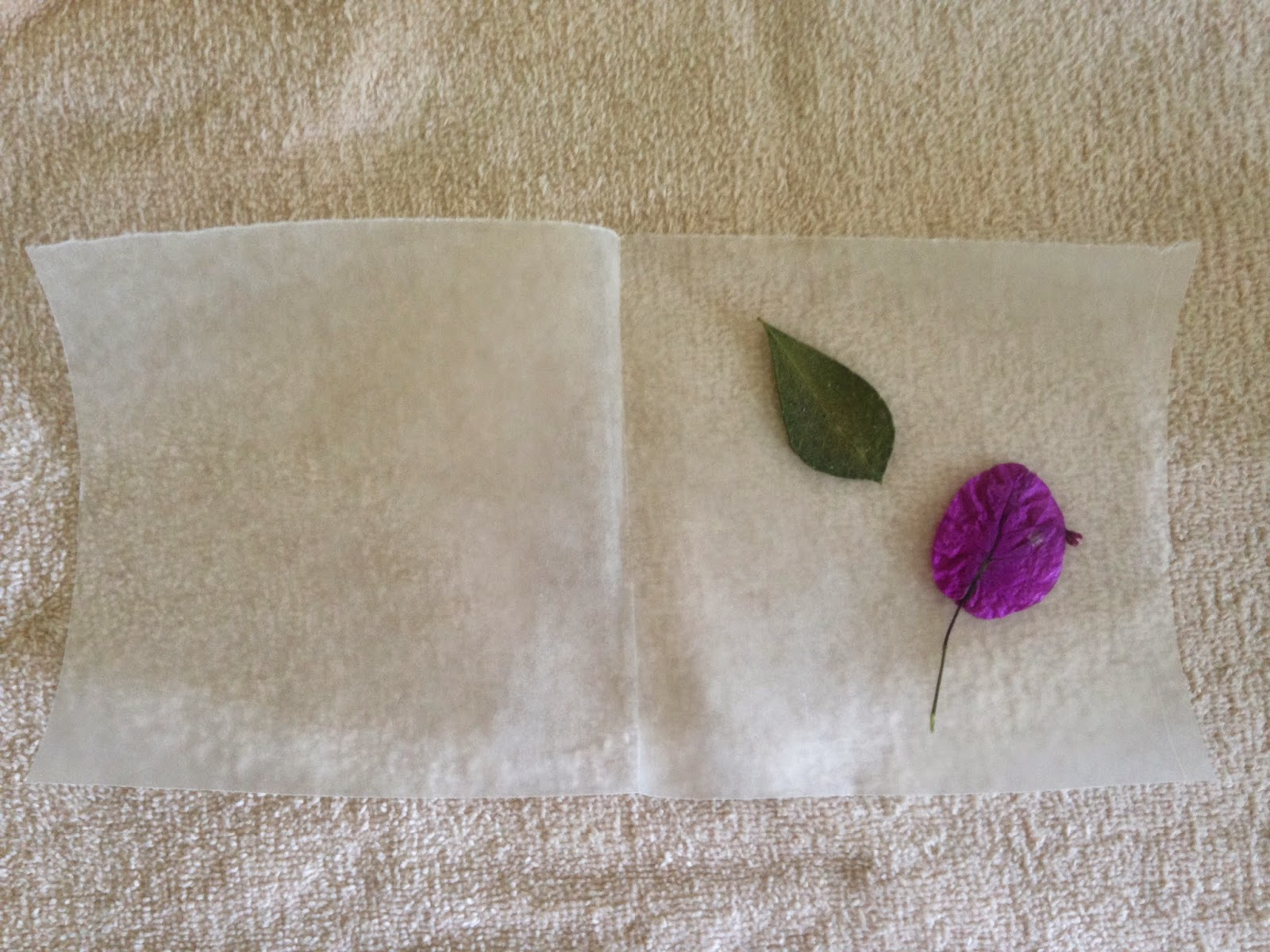 How to how hard and how much diy wax paper luminarias fold over the wax paper so the flowers are now inside the square mightylinksfo