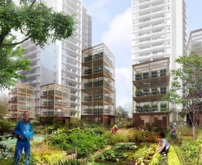 Jardin ouvrier potager bio urbain inter environnement for Jardin ouvrier
