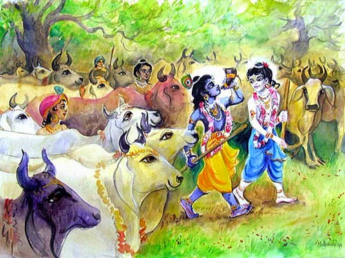 Krishna Balram taking cows for grazing grass of Talvana
