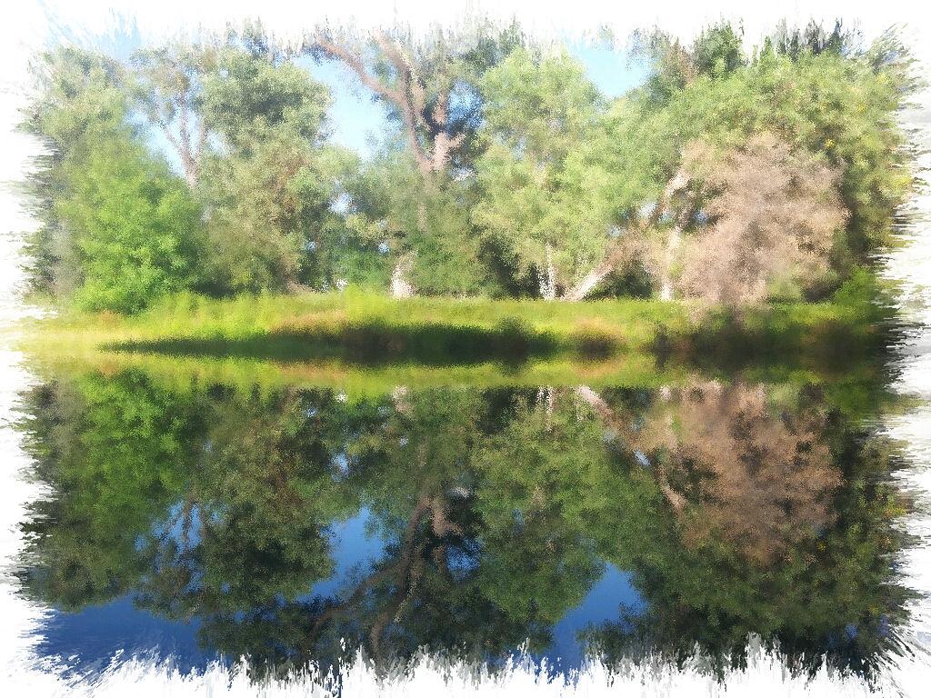 Kayaking the california delta mokelumne river for Mokelumne river fishing