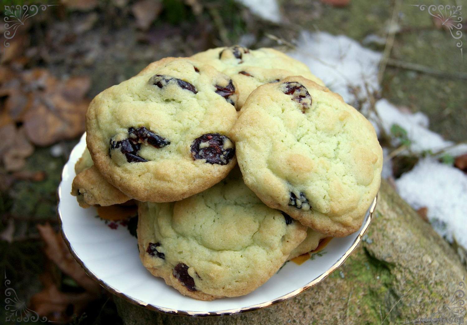 Home Cooking with Sonya: Cranberry Pistachio Pudding Cookies