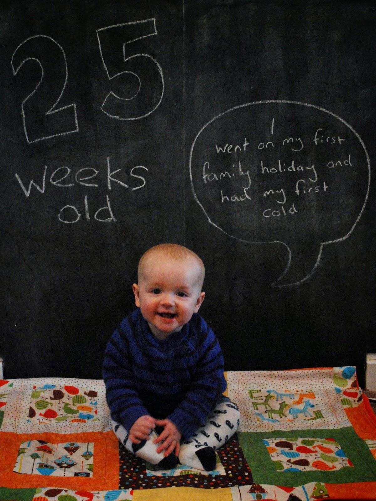 25 Weeks Old.