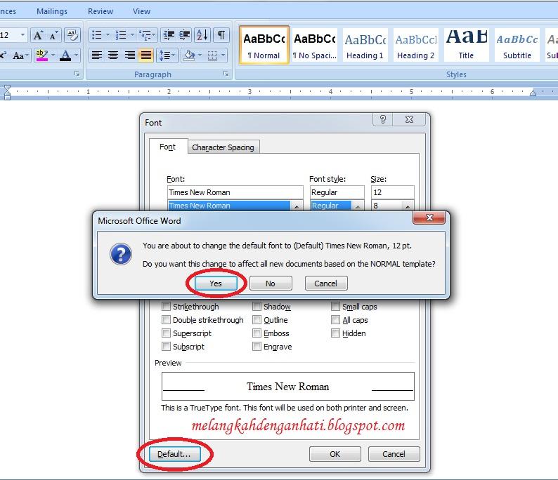 cara merubah times new roman menjadi default font di word 2007-3
