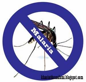 Obat tradisional malaria