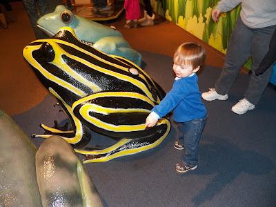 Aquarium Picture 9