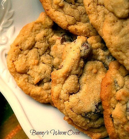 Bunny's Warm Oven: Chocolate Chip Pudding Cookies
