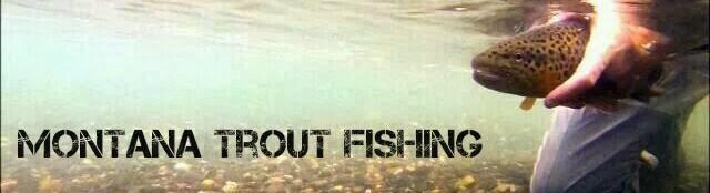 Montana Trout Fishing