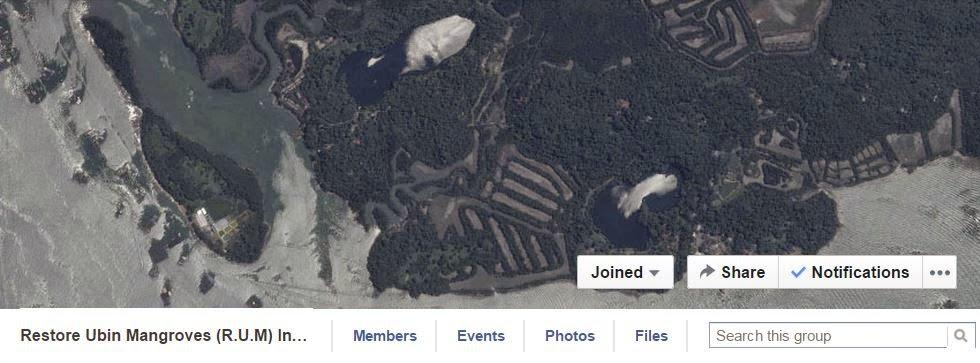 Restore Ubin Mangroves (R.U.M.) Initiative on facebook