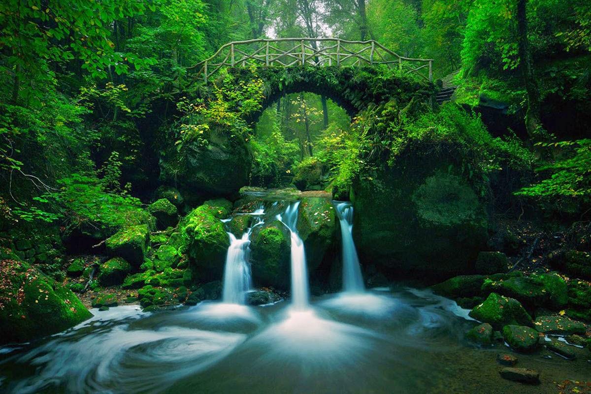 أجمل عشرة جسور