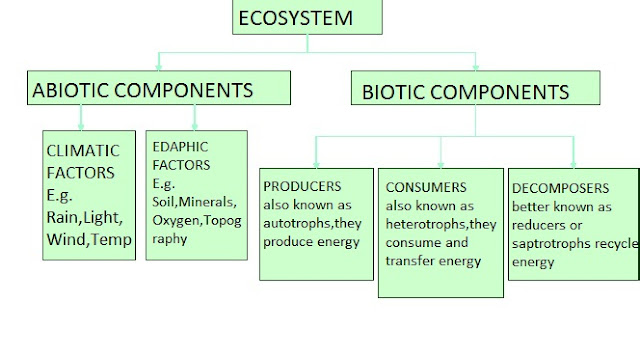 the biotic and abiotic structure and function of an ecosystem