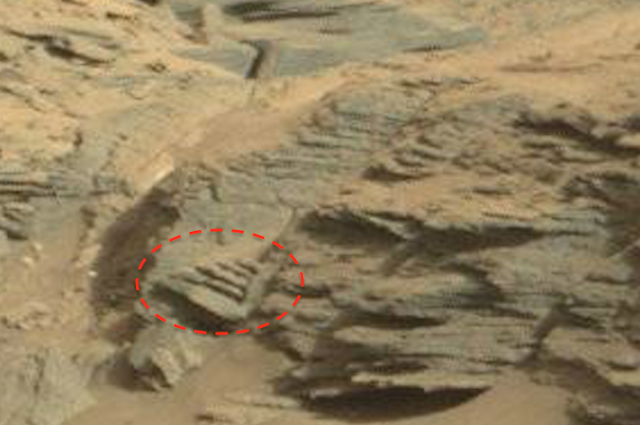 mars rover finds animal - photo #45