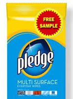 Free Pledge Multi Surface Wipes