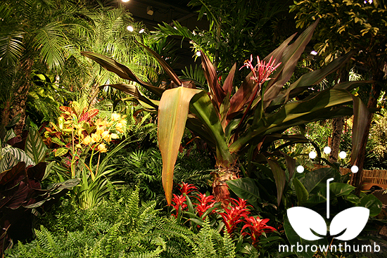 Brazilian Jungle. Macy's Flower Show