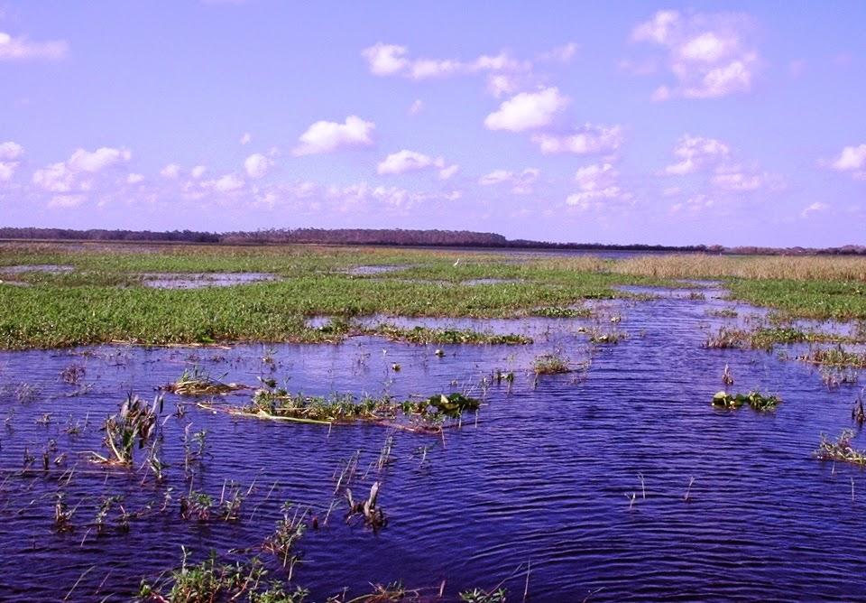 Lago Tohopekaliga na Flórida