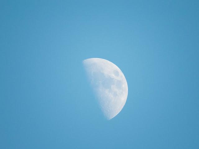 Луна в крымском небе днем