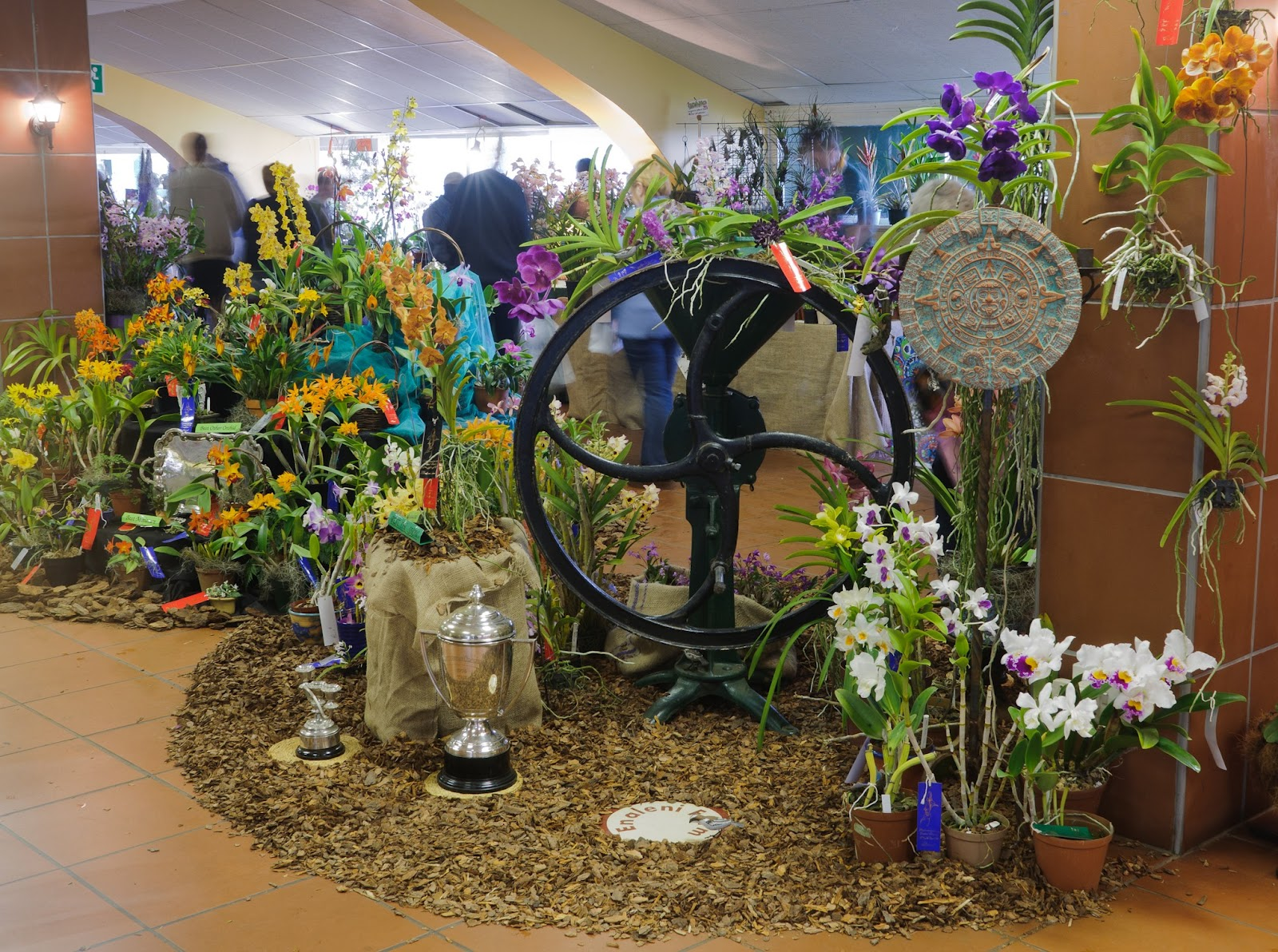 National Orchid Garden, a horticultural showpiece