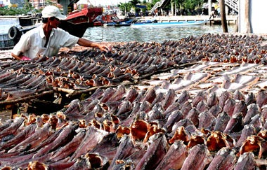 Dried mud fish: it is a specialty of the Mekong Delta's Tien Giang province