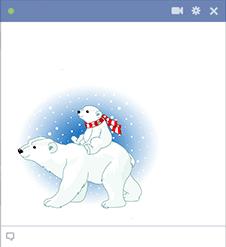 Polar Pair Icon