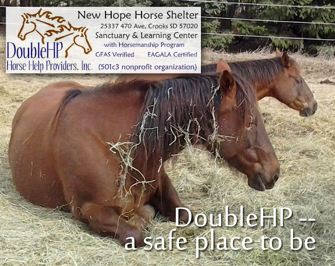 DoubleHP at New Hope Horse Shelter