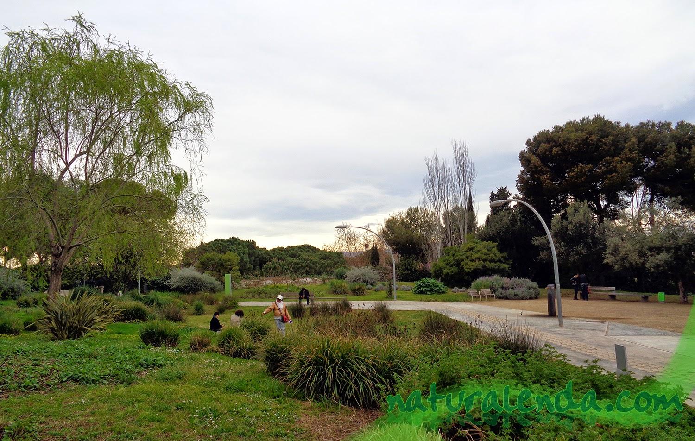 Jardines de Joan Brossa