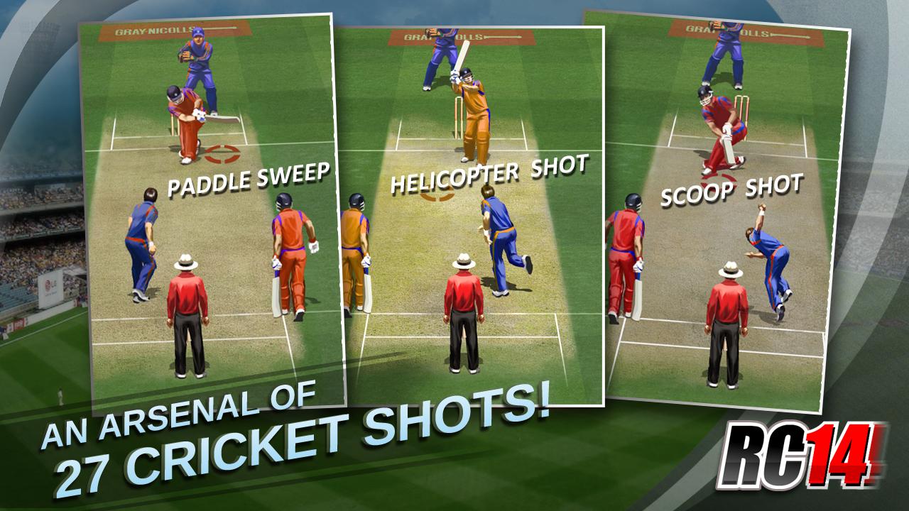 Cricket Game 2014