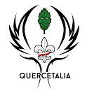 """Logo 6 ODH """"Quercetalia"""""""