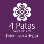 4 PATAS, ASOCIACIÓN CIVIL