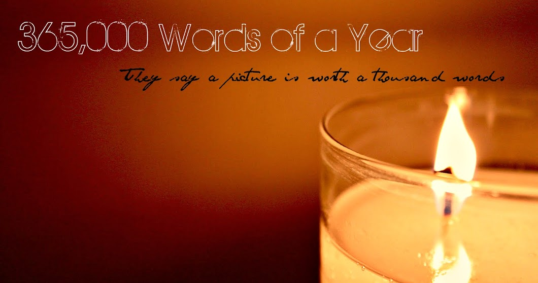 The 365,000 Words of a Year