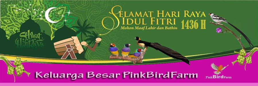 PINK BIRD FARM