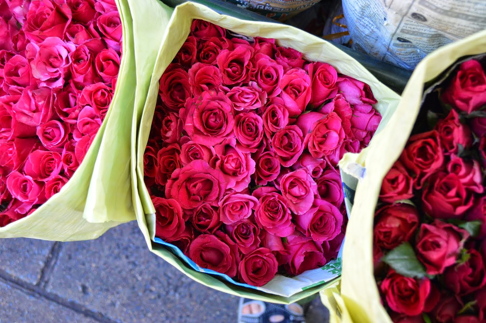Fifty Cents' Worth of Roses, Bangkok