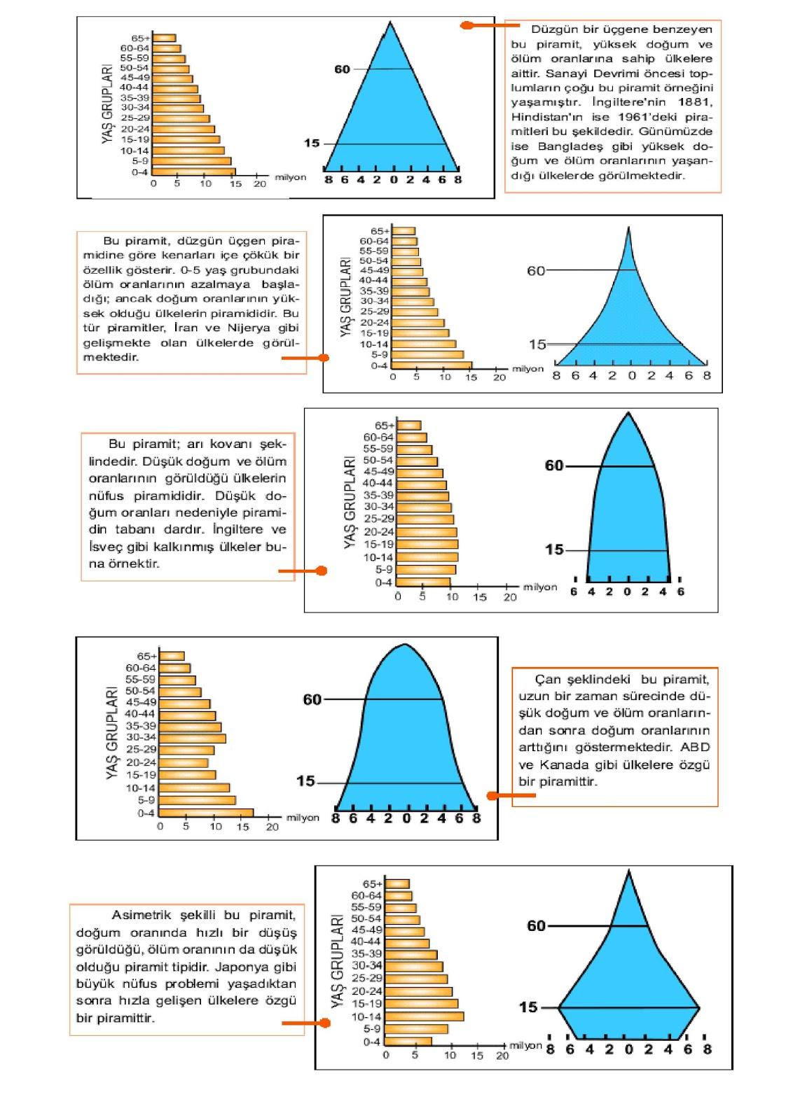 Yukle Xbedroom Ideasrelated Images To Sekil Nufus Piramidi