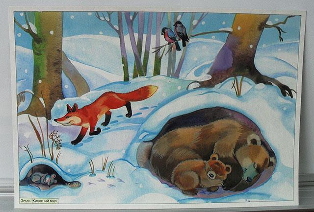Дикие животные и их детеныши зимой картинки