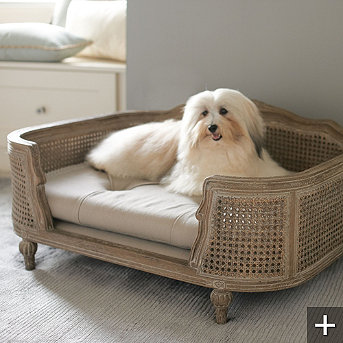 pet beds that add style to your home s decor   driven by decor
