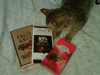 Resep Brownies Kukus Ny Liem Topping Chocolate Glaze Ekonomis, Nyoklat Banget!