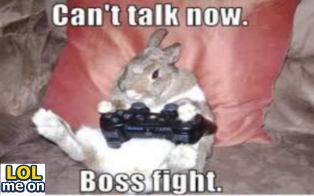 Boss Fight - Funny Picture With Caption  Funny pictures