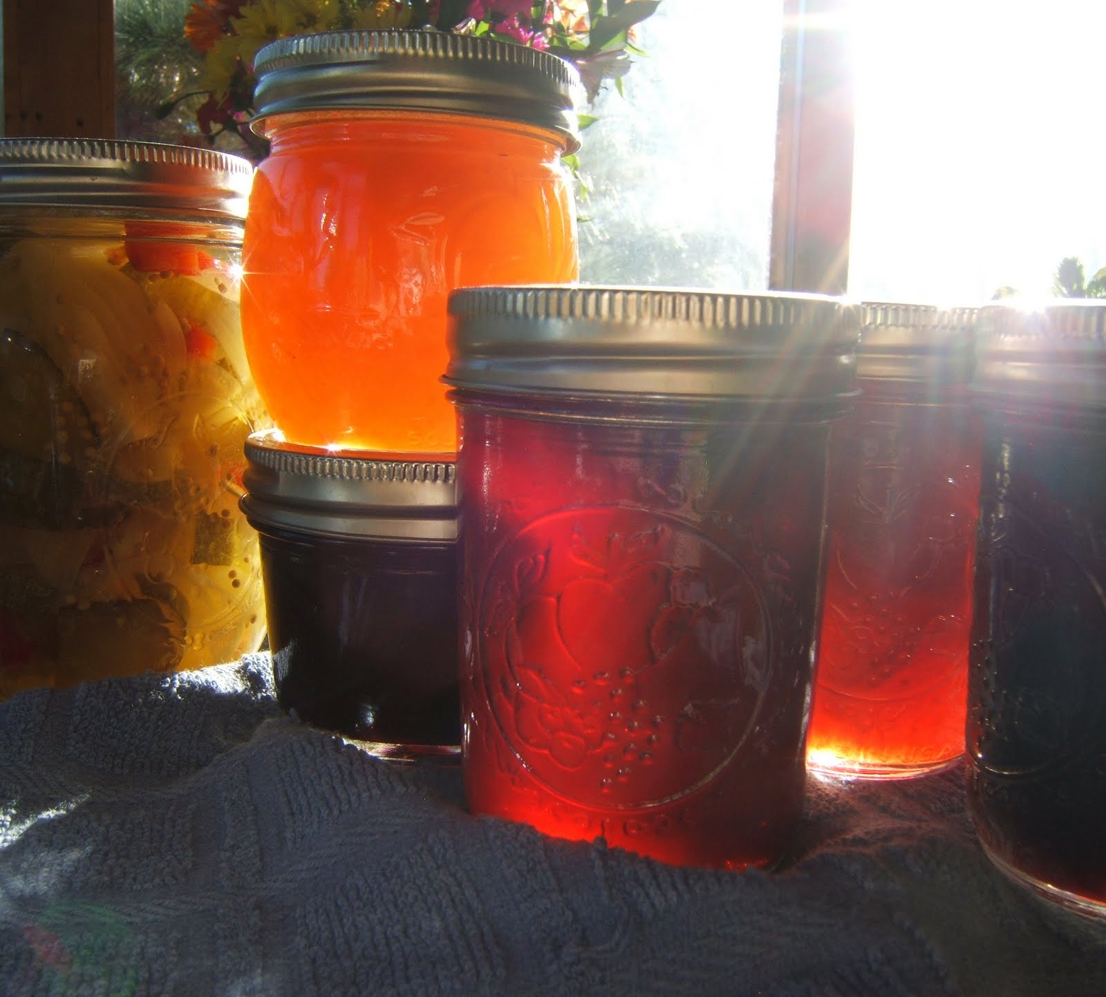 Wonderful morning sunlight shining through my jars of jam, Taos Canyon, New Mexico