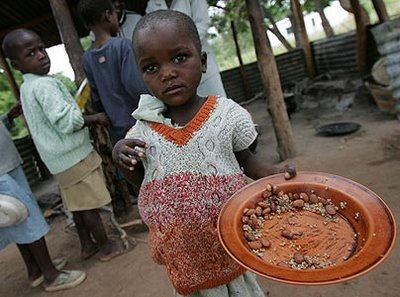 Around 6 million people starving: Tens of thousands of dead cattle: 75% of crops have been abandone