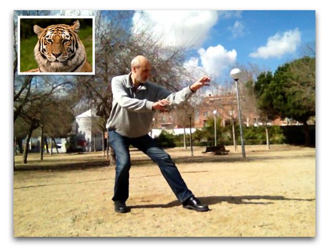 Guía: Chi Kung de los 5 animales